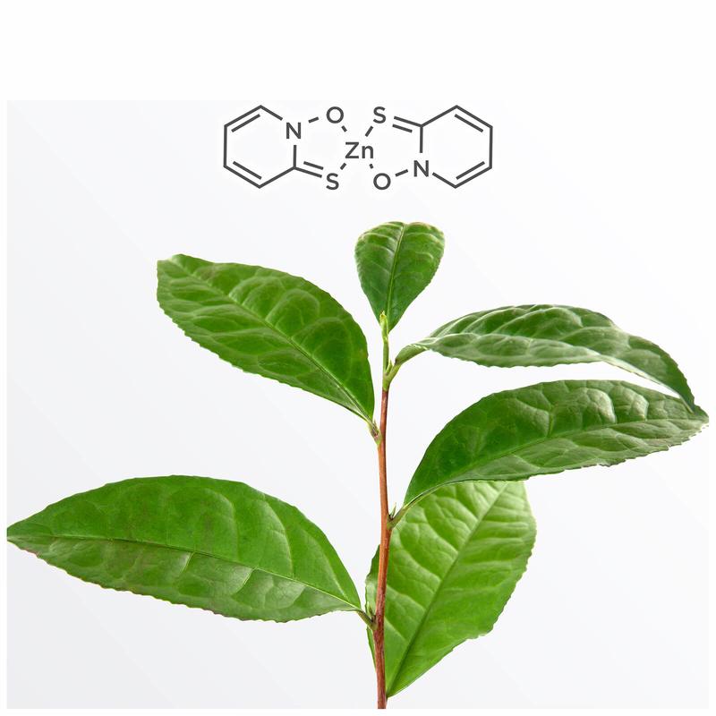 NIOXIN Scalp Recovery Moisturising Conditioner - Balsam hidratant impotriva matretii 200ml